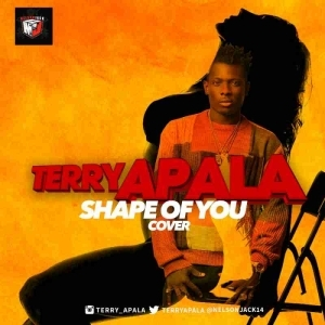 Terry Apala - Shape of You (Ed Sheeran Cover)